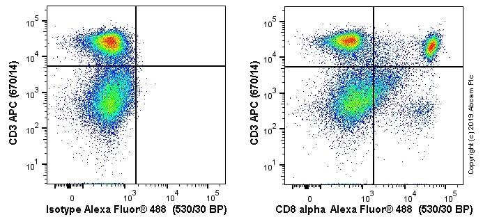 Flow Cytometry - Alexa Fluor® 488 Anti-CD8 alpha antibody [OX-8] (ab256296)