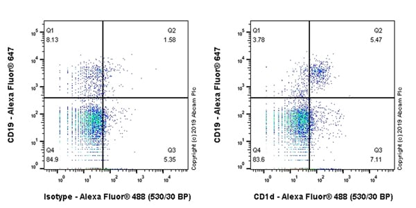 Flow Cytometry - Anti-CD1d antibody [EPR22526-9] - BSA and Azide free (ab256357)