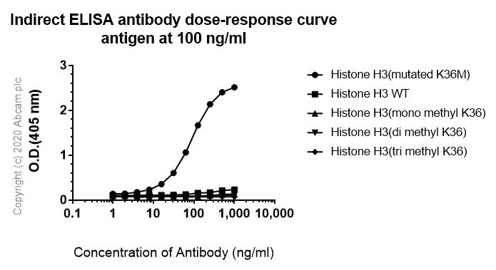 Indirect ELISA - Anti-Histone H3 (mutated K36M) antibody [EPR23614-91] (ab256384)