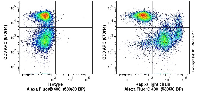 Flow Cytometry - Alexa Fluor® 488 Anti-Kappa light chain antibody [OX12] (ab256420)
