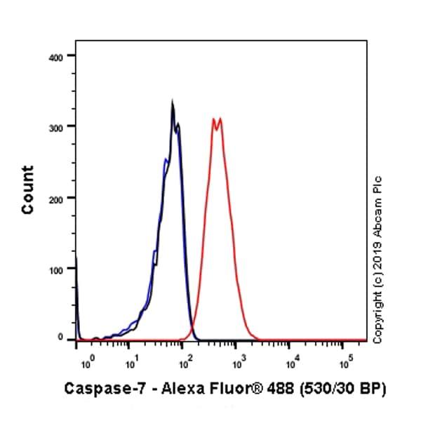 Flow Cytometry - Anti-Caspase-7 antibody [EPR22839-12] - BSA and Azide free (ab256539)
