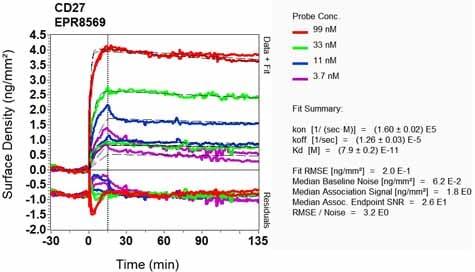 OI-RD Scanning - Anti-CD27 antibody [EPR8569] - BSA and Azide free (ab256583)