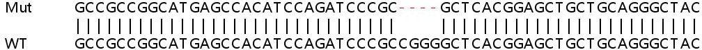 Sanger Sequencing - Human PRKAR2A knockout HeLa cell lysate (ab257607)