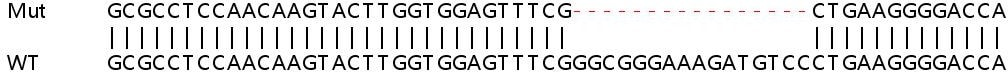 Sanger Sequencing - Human ADRM1 knockout HEK293T cell lysate (ab257816)