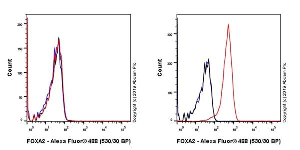Flow Cytometry - Anti-FOXA2 antibody [EPR22919-71] - ChIP Grade – BSA and Azide free (ab259272)