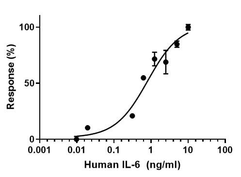 Functional Studies - Recombinant human IL-6 protein (Active) (ab259381)