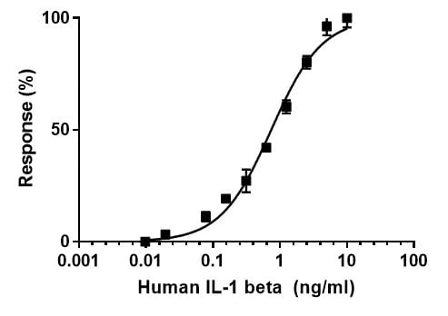Functional Studies - Recombinant human IL-1 beta protein (Active) (ab259387)