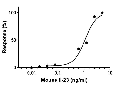 Functional Studies - Recombinant Mouse IL-23 protein (Active) (ab259423)