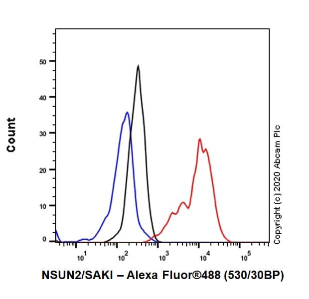 Flow Cytometry - Anti-NSUN2/SAKI antibody [EPR24140-93] (ab259941)