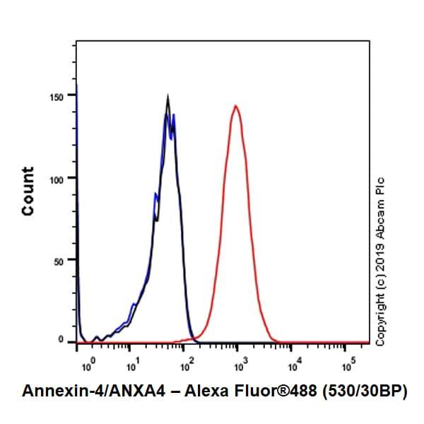 Flow Cytometry - Anti-Annexin-4/ANXA4 antibody [EPR22929-208] - BSA and Azide free (ab259999)