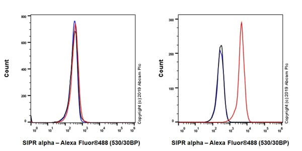 Flow Cytometry - Anti-SIRP alpha antibody [EPR22930-163] (ab260039)