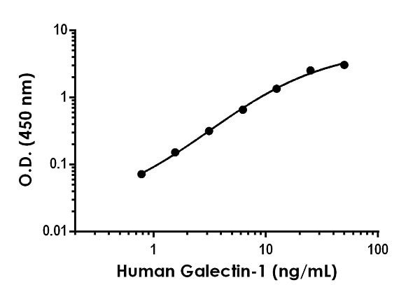 Example of human Galectin-1 standard curve in Sample Diluent NS.