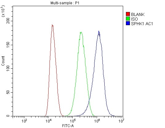 Flow Cytometry - Anti-SPHK1 antibody (ab260073)