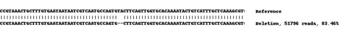 Next Generation Sequencing - Human EPCAM knockout A-431 cell lysate (ab261708)