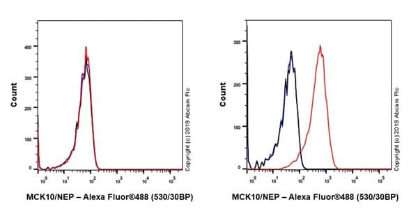 Flow Cytometry - Anti-MCK10/NEP antibody [EPR22316-508] - BSA and Azide free (ab261728)