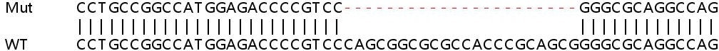 Sanger Sequencing - Human LMNA knockout HeLa cell line (ab261787)