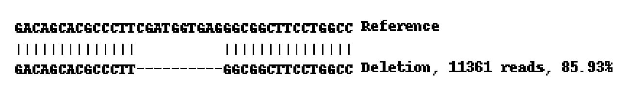 Next Generation Sequencing - Human MMP14 knockout A-431 cell line (ab261890)