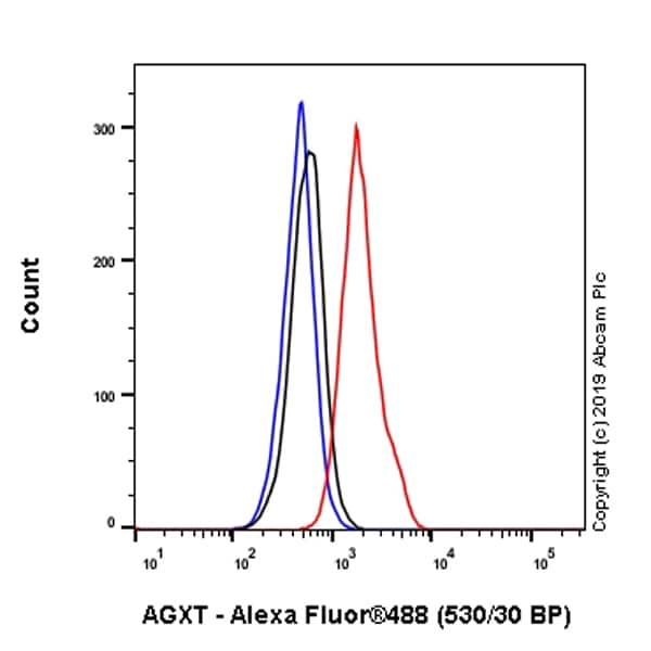 Flow Cytometry - Anti-AGXT antibody [EPR22885-58] (ab261910)