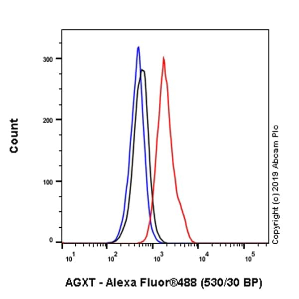Flow Cytometry - Anti-AGXT antibody [EPR22885-58] - BSA and Azide free (ab261914)