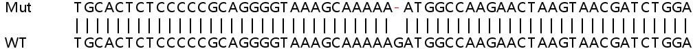 Sanger Sequencing - Human C19orf66 knockout A549 cell lysate (ab263126)