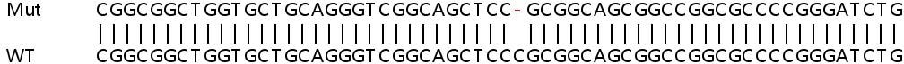 Sanger Sequencing - Human CCNL2 knockout HEK293T cell lysate (ab263139)