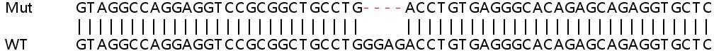Sanger Sequencing - Human GNG4 knockout HEK293T cell lysate (ab263221)