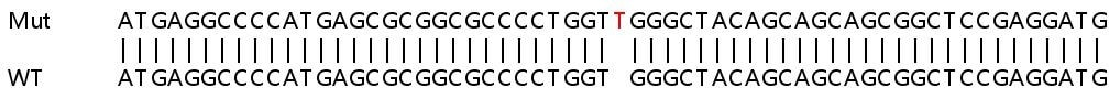 Sanger Sequencing - Human USB1 knockout HeLa cell lysate (ab263408)