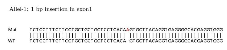 Sanger Sequencing - Human MUC1 knockout HeLa cell lysate (ab263764)