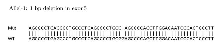 Sanger Sequencing - Human IRF3 knockout HeLa cell lysate (ab263784)