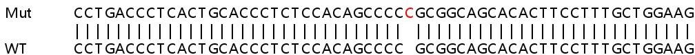 Sanger Sequencing - Human ERN1 knockout HeLa cell lysate (ab263819)