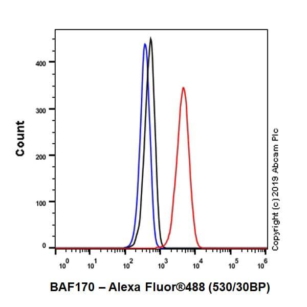 Flow Cytometry - Anti-BAF170 antibody [EPR23066-21] - BSA and Azide free (ab263871)