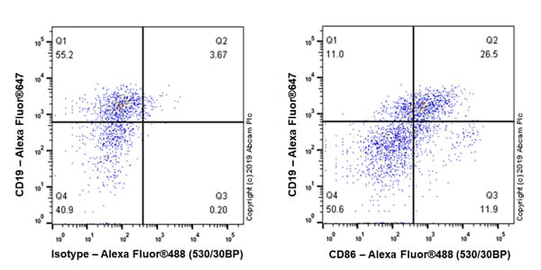 Flow Cytometry - Anti-CD86 antibody [EPR22958-106] - BSA and Azide free (ab263872)