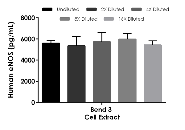 Interpolated concentrations of native eNOS in human bEnd.3 cell extract based on a 40 µg/mL extract load.