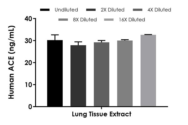 Interpolated concentrations of native ACE in human lung tissue extract sample based on a 125 µg/mL extract load.