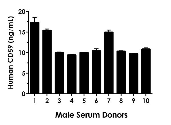 6.25% Serum from ten individual healthy human male donors was measured in duplicate.