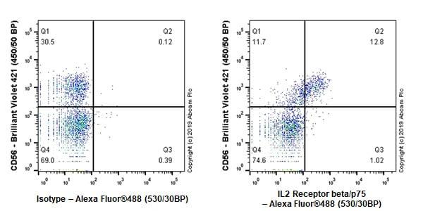 Flow Cytometry - Anti-IL2 Receptor beta/p75 antibody [EPR22892-2] (ab263906)