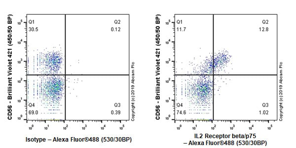 Flow Cytometry - Anti-IL2 Receptor beta/p75 antibody [EPR22892-2] - BSA and Azide free (ab264075)