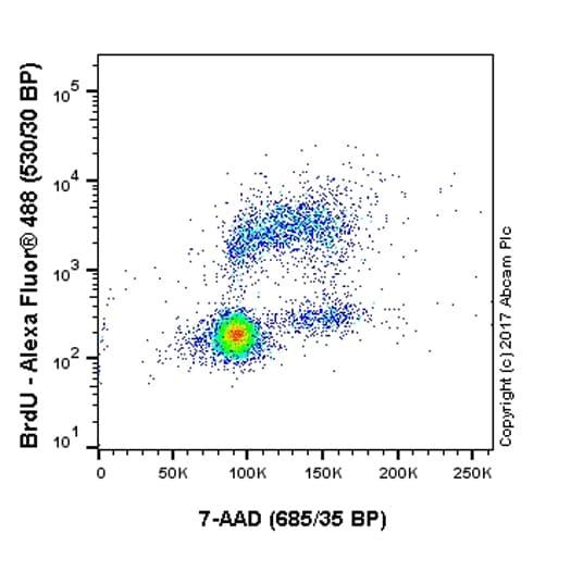Flow Cytometry - Anti-BrdU antibody [BU1/75 (ICR1)] - BSA and Azide free (ab264079)