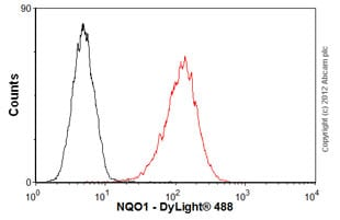 Flow Cytometry - Anti-NQO1 antibody [A180] - BSA and Azide free (ab264434)