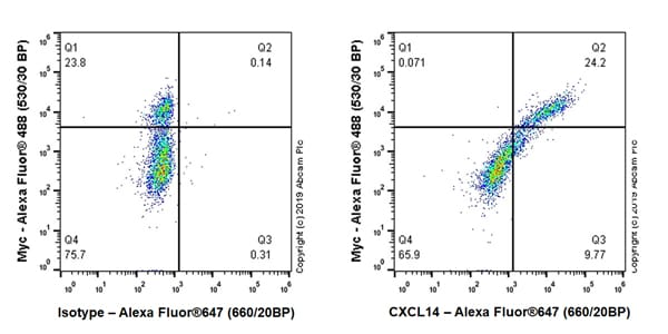 Flow Cytometry - Anti-CXCL14 antibody [EPR22807-28] (ab264467)