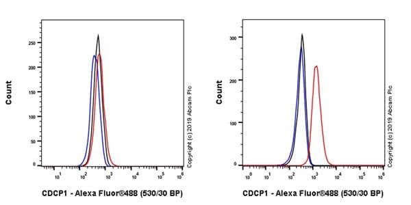 Flow Cytometry - Anti-CDCP1 antibody [EPR23162-102] - BSA and Azide free (ab264472)