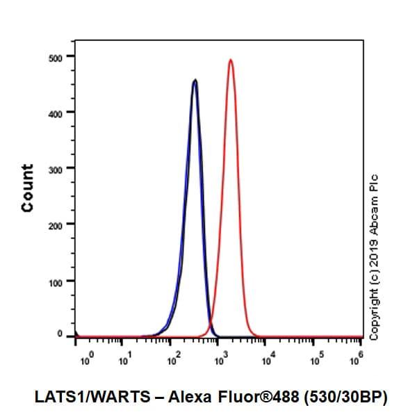 Flow Cytometry - Anti-LATS1/WARTS antibody [EPR23057-116] - BSA and Azide free (ab264475)