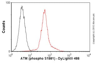 Flow Cytometry - Anti-ATM (phospho S1981) antibody [10H11.E12] - BSA and Azide free (ab264520)