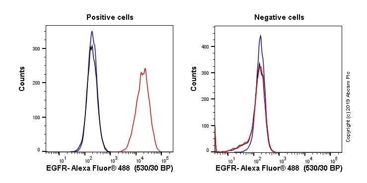 Flow Cytometry - Anti-EGFR antibody [EGFR1] - BSA and Azide free (ab264523)