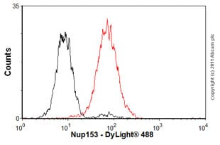 Flow Cytometry - Anti-Nup153 antibody [QE5] - BSA and Azide free (ab264554)