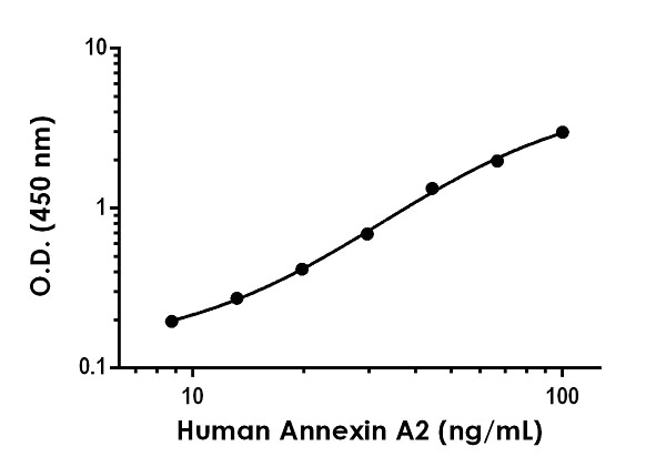 Example of human Annexin A2 standard curve in Sample Diluent 1X Cell Extract Buffer PTR.