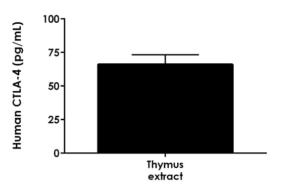 Interpolated concentration of native CTLA-4 in human thymus tissue extract based on a 250 µg/mL extract load.