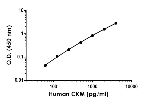 Example of human CKM standard curve in Sample Diluent NS.