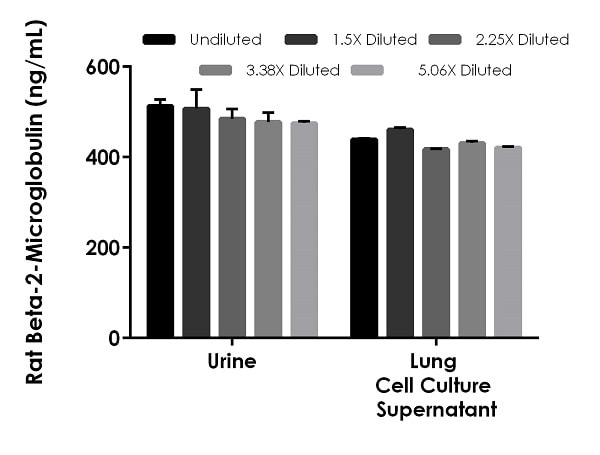 Interpolated concentrations of native Beta-2-Microglobulin in rat urine and cell culture supernatant samples.