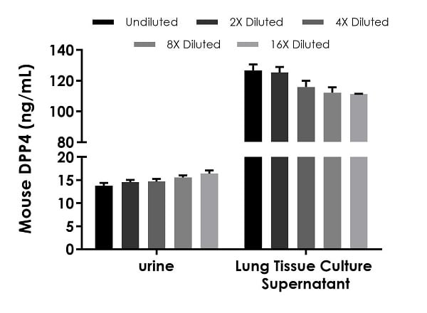 Interpolated concentrations of native DPP4 in mouse urine and lung tissue culture supernatant samples.